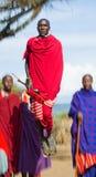 Mannen av en stamMasai visar rituella hopp Arkivfoton