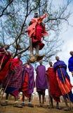 Mannen av en stamMasai visar rituella hopp Royaltyfri Bild