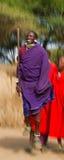 Mannen av en stamMasai visar rituella hopp Arkivbilder
