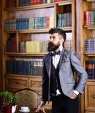 Mannen bär flugan arkivfoto