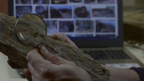 Mannen betraktar ett fossil lager videofilmer
