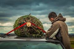 Mannen binder den nya evergreen till bilen royaltyfria bilder