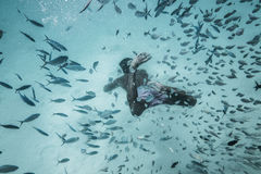 Mannen dyker bland feeshesna i ett djupblått vatten Royaltyfri Bild