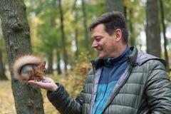 Mannen erbjuder en mutter till en ekorre Ekorren tar mat från mänskliga händer Royaltyfri Fotografi