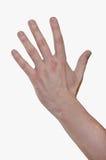 mannen för boxningnävehanden kriger Fem fingrar, uppvecklade gömma i handflatan Arkivfoto