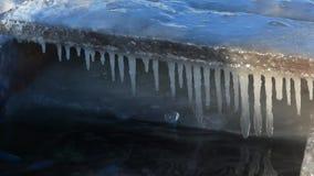 Mannen fördjupas i kallt vatten, dagen, vinter, soligt och kallt arkivfilmer
