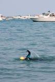 Mannen fungerar ut med Simning Till och med deltagarefartyg royaltyfria bilder