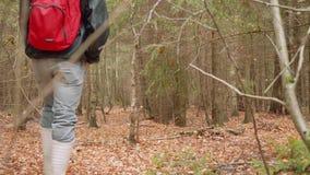 Mannen går i torr gammal höstskogkänsla av nöje och lugn arkivfilmer