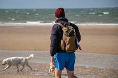 Mannen går på stranden med hans hund och bärande ryggsäck arkivbild
