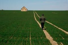 Mannen går tillbaka hem på vägen bland det gröna fältet royaltyfri foto