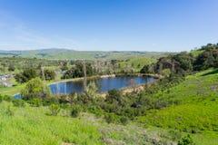Mannen gjorde dammet på kullarna av Santa Teresa parkerar på en golfbana, San Jose, södra San Francisco Bay område, Kalifornien royaltyfri foto