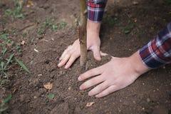 Mannen har planterat ett ung träd och omsorg om honom, medan arbeta i trädgården Jorddag, jordskydd Royaltyfri Foto