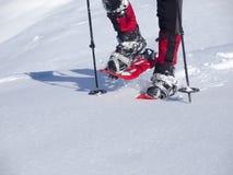 Mannen i snöskor royaltyfria foton