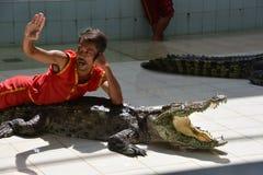 Mannen ligger på krokodilen Krokodilshow på den Phuket zoo, Thailand - December 2015: krokodilshow på krokodillantgården arkivbild