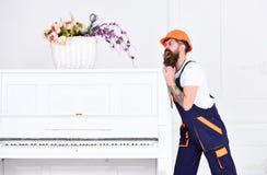 Mannen med skägget, arbetaren i overaller och hjälmen skjuter pianot, vit bakgrund Hemsändningbegrepp Laddarflyttningar royaltyfri fotografi