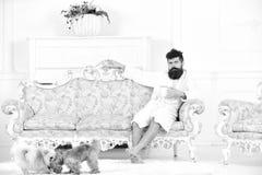 Mannen med skägget och mustaschen tycker om morgon, medan sitta på den lyxiga soffan Elitfritidbegrepp Man på drömlik framsida in arkivbilder