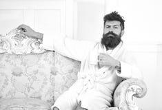 Mannen med skägget och mustaschen tycker om morgon, medan sitta på den lyxiga soffan Elitfritidbegrepp Man på sömnig framsida in royaltyfri foto