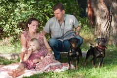 Mannen med två hundkapplöpning skyddar kvinnan med barnet Royaltyfri Foto
