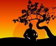 Mannen mediterar i den Lotus positionen under bakgrunden av ett fördelande träd, solnedgången och naturen Stillhet poserar, menta Arkivfoton