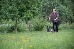 Mannen mejar gräsmattan i sommar Arkivbild