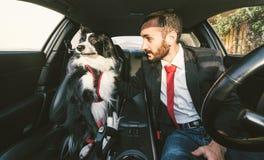 Mannen motiverar hans hund för hund- konkurrens Royaltyfri Bild
