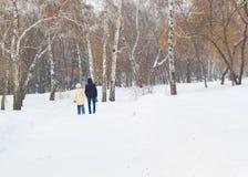 Mannen och kvinnan som går i vinter, parkerar under ett snöfall Arkivfoto