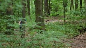Mannen på bycicle kommer mer nära i skog stock video