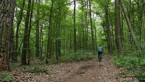 Mannen på bycicle rider bort i skog lager videofilmer