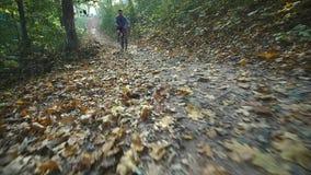 Mannen på cykeln rider förbi i skogman på cykelritter förbi i skogultrarapid arkivfilmer