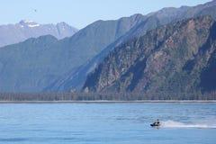 Mannen på strålen skidar i Stilla havet i Kenai fjordnationalpark Arkivbilder