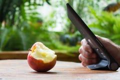 Mannen räcker genom att använda minnestavladatoren och det bet äpplet på trätabl Arkivfoto