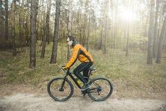 Mannen rider en cykel i skogen Royaltyfri Foto
