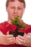 Mannen rymmer en bonsaitree i hans händer Royaltyfria Bilder
