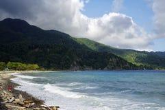 Mannen samlar skal på stranden i den Berekua byn dominica Royaltyfria Bilder