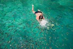 Mannen simmar bland fisken i en maskering och en snorkel, Thailand Fotografering för Bildbyråer