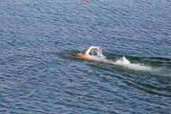 Mannen simmar i sjön Royaltyfria Bilder