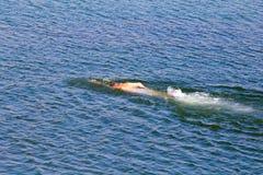 Mannen simmar i sjön Arkivfoto
