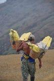Mannen som carting fosforn på, ijen Royaltyfri Bild