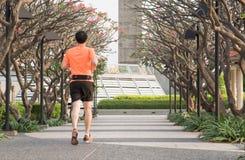 Mannen som joggar på, parkerar arkivbilder