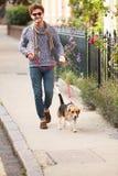 Mannen som tar hunden för, går på stadsgatan Royaltyfri Foto