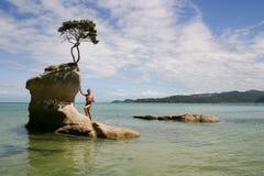 Mannen står på en vagga, Abel Tasman Park, Nya Zeeland Royaltyfria Foton