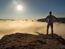 Mannen står på maximumet av sandsten vaggar i nationalparken Sachsen Schweiz och att hålla ögonen på över den dimmiga dalen för m Arkivfoto