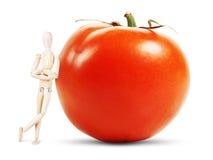 Mannen står vid en enorm mogen tomat Royaltyfria Foton