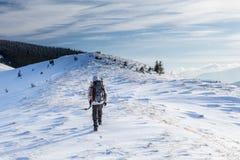 Mannen vandrar i vinterberg royaltyfri bild