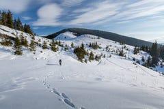 Mannen vandrar i vinterberg fotografering för bildbyråer