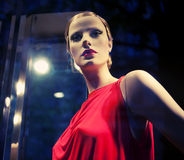 Mannequin. Stock Images