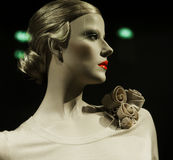 Mannequin. Royalty Free Stock Image