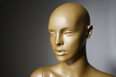Mannequin Royalty Free Stock Photo