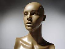 Mannequin Photographie stock libre de droits