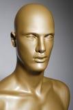 Mannequin Image stock